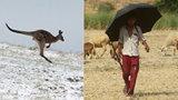 Počasí ve světě šílí: Indii spalují vedra kolem 50 °C, v Austrálii sněží