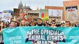 Prahou prošel průvod za práva zvířat: Zúčastnily se ho stovky lidí