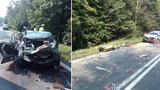 Tragédie u Radostína: Střetly se tu sanitka a tři vozy, zemřeli dva lidé