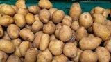 """Cena brambor: """"Katastrofa zažehnána,"""" říká po sklizni ekonom. Méně je řepky či hrachu"""