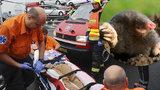 Muž chtěl zničit krtka výbuchem: S vážnými zraněními ho odvezla záchranka!