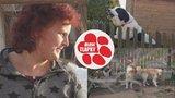 Štěkot, zápach a křik: Množitelka ze Světnova dál kšeftuje se psy, úřady jen přihlíží