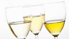 Nejlepší víno pro letošní rok? Ryzlink vlašský!