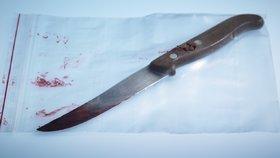 Pobodaný Milan (†21) se potácel celý od krve: Ušel 200 metrů, upadl a zemřel