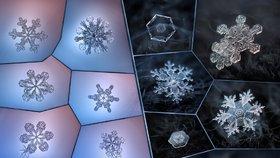 Zmrzá krása: S přístrojem za pár korun fotí úchvatné snímky sněhových vloček