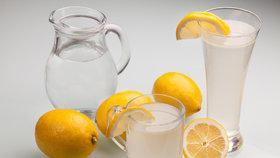 Jednodenní detoxikace