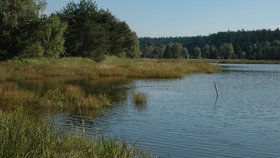 Muž (†25) se šel koupat se synem do rybníka a utopil se. Dítě zachránili přihlížející