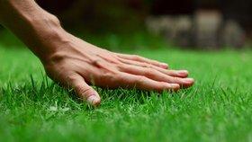 Desatero zkušeného trávníkáře: Co dělat pro tu nejkrásnější zahradu?