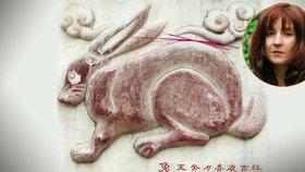 Čínský horoskop – Zajíc