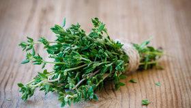 8 praktických tipů, jak si nasušit bylinky doma. Budou voňavější než kupované