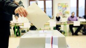 Na Mostecku opakují volby: O senátorské křeslo bojuje 9 kandidátů
