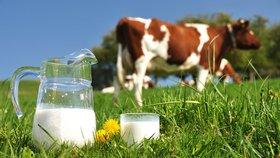 Vyvracíme mýty a pověry o mléku: Co jste o něm možná netušili?