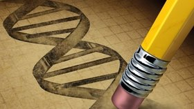 Vědci volají po změně zákona: Chtějí si hrát s lidskými geny