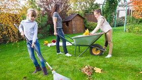 Podzimní úklid kolem domu? Povolejte posily!