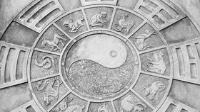 Horoskop na další týden: Opice udělají radikální řez, Zajícům se změní život