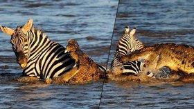 """Známý fotograf zachytil drtivý útok krokodýla na zebru! """"Na tohle si nikdy nezvyknu,"""" říká"""
