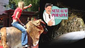 Sexuální poradna: Zažila jsem penisové rodeo, vaginu mám teď jako jeskyni