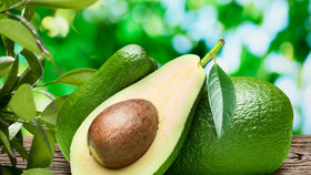 Vychytávky Ládi Hrušky: Vypěstujte si doma avokádo. Stačí plastový kelímek a párátka