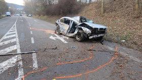 Dívku (†17) zabil náraz do stromu, řidič vozu nezvládl rychlou jízdu