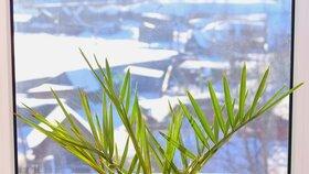 Otevřete dveře jaru: Nezapomeňte, po zimě zkontrolovat terasu, půdu ani balkon!