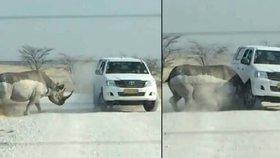 Děsivá jízda na safari: Rozzuřený nosorožec napadl turisty!