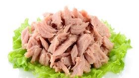 Veterináři stáhli 300 kilo tuňáka z Chrášťan. Lidem hrozila svědivá vyrážka