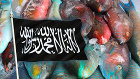 Teroristé z ISIS ve volných chvílích rybaří, dochází jim peníze