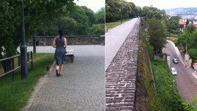 Pes spadl z hradeb Vyšehradu: Žádná psí sebevražda, jen nepozornost majitele