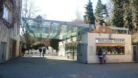 Zoo Praha zdraží od února vstupné o 50 Kč! V porovnání  s ostatními zahradami jsme levní, říká vedení