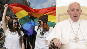 Papež František chce, aby církev požádala homosexuály o odpuštění. Byl smutný