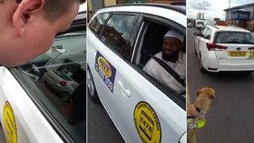 Muslimský taxikář odmítl naložit slepce s asistenčním psem: Prý kvůli své víře