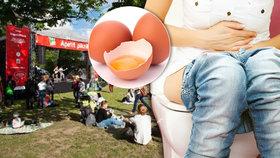 Přísnější kontrola »Apetit pikniku« rok po salmonele: Na akci dohlédne hygiena