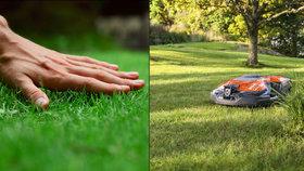 Chraňte během léta svůj trávník! Přinášíme vám 10 tipů jak na krásný pažit