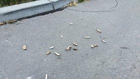 Nedopalky cigaret, lahve, pneumatiky v křoví: V Praze 14 uklidili dobrovolníci skoro dvě tuny odpadků