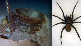 Motory Apolla 11, prokletý smaragd i podivný pavouk: Co skrývá dno oceánů?