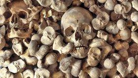 Překvapení před stavbou zábavního parku: Průzkum odhalil tisíce lidských ostatků