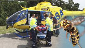 Boj o život alergika: Muže pobodalo pět vos, zkolaboval! V těžkém šoku ho vezli do nemocnice