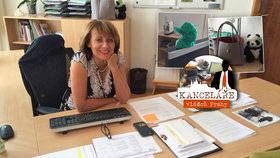 Odtud vládne Krnáčová: V kanceláři má pandy, fitko i míče. Podívejte se