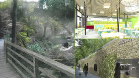 Pražská zoo postaví pavilony za miliardu. Podívejte se, jak zahradu zvelebí