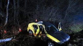 Řidič (†22) narazil autem do stromu, nehodu nepřežil
