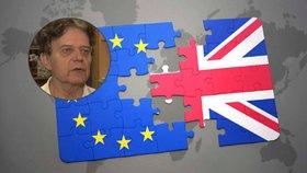 Brexit bude, tvrdí politolog. Parlament se kvůli volbám lidu nevzepře