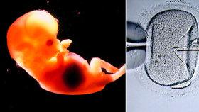 """Záměna embryí: Kde se to v Brně """"zvrtlo"""" a kolik lidí u toho bylo?"""