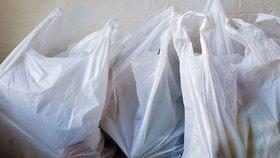 Igelitky v obchodech budou už jen za peníze. Zeman podepsal zákaz tašek zdarma