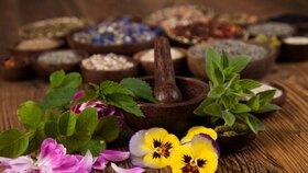 Astrologické bylinkářstí: Léčivé byliny podle znamení horoskopu