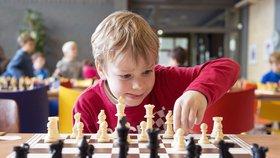 Ve Vinoři se to bude rojit střelci, koňmi i věžemi: Šachový turnaj je otevřený všem