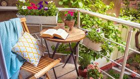 Jak osadit severní balkon, aby kvetl od jara až do podzimu
