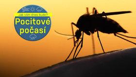 Počasí nás ve středu pustí k vodě i na borůvky, ale dejte pozor na komáry