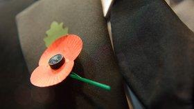Den válečných veteránů: Kde se vzal květ vlčího máku