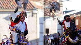 Brutalita jako ve středověku: Lidé za jízdy na koních škubou husám hlavy!
