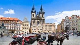 Opilý kočí nadýchal přes promile: Kůň je střízlivý, tvrdil policistům